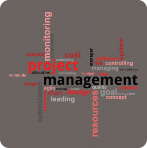 TandemProject Management